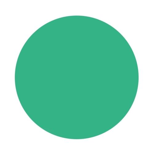 Tinta Eternal Ink Chukes Seasonal Spectrum Coral Green