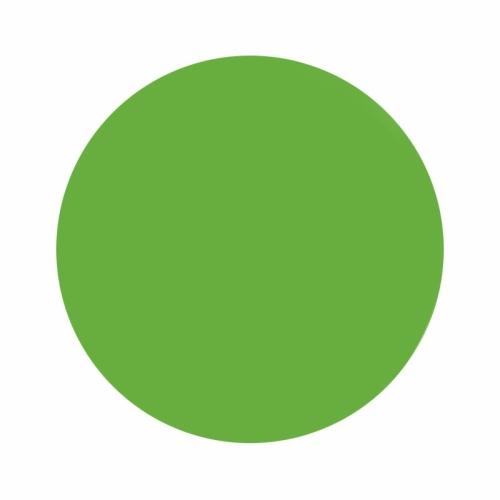 TINTA ETERNAL INK GRAFFITI GREEN 30ml (1 oz)