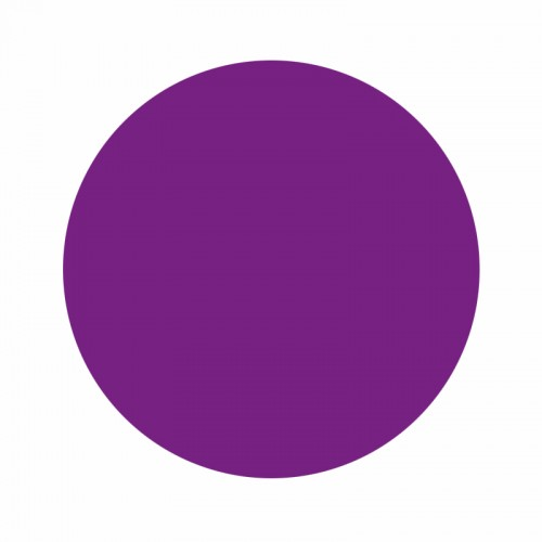 Eternal Ink Liz Cook Red Violet 30ml (1oz)