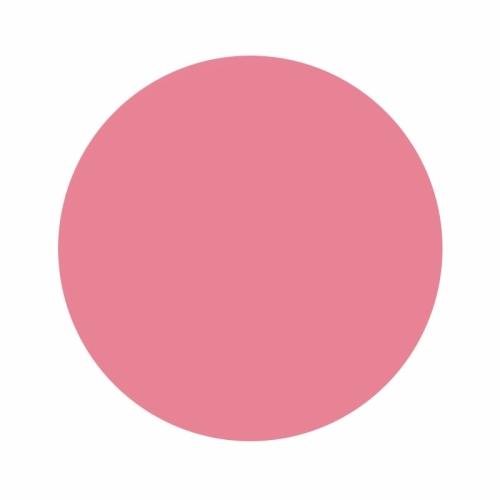 Eternal Ink Liz Cook Pepto Pink