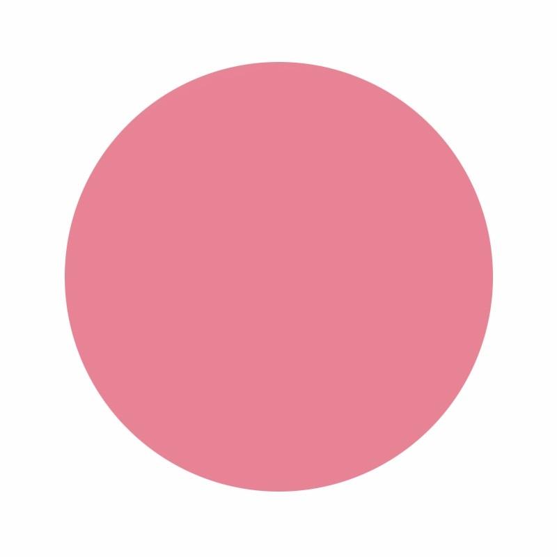 Eternal Ink Pepto Pink Liz Cook