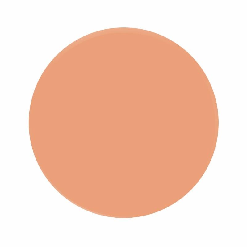 Eternal Ink Nude Blush Portrait Colours