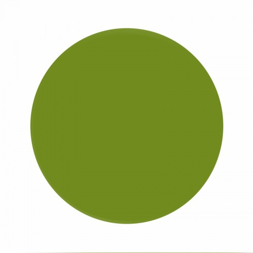 Eternal Ink Muted Earth Tones Green Slime 30ml (1oz)