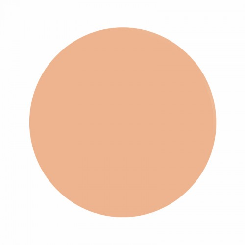 Tinta Eternal Ink Peachy Flesh Muted Earth Tones