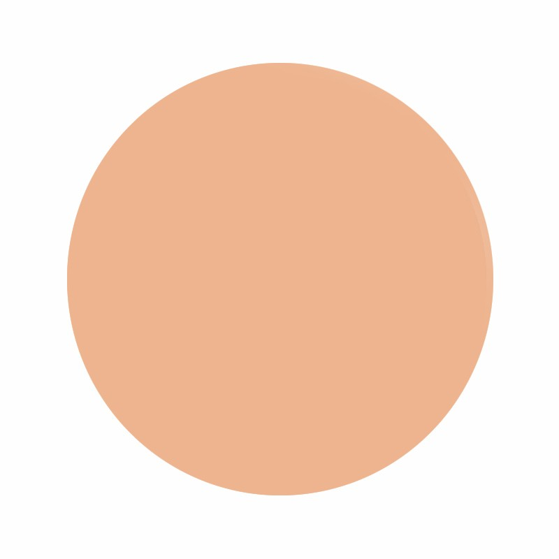 Eternal Ink Peachy Flesh Muted Earth Tones