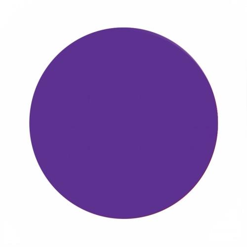 Eternal ink Motor city cuda purple